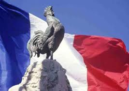 Coq_French flag