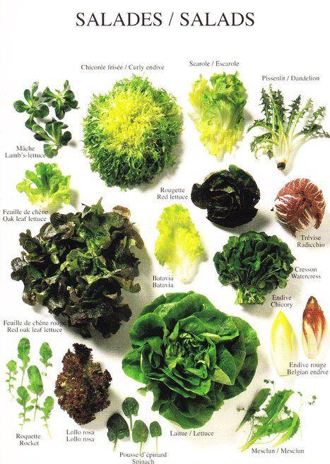 raconter-une-salade